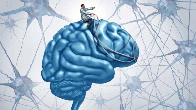 Stresli Anları Neden Daha İyi Hatırlarız?